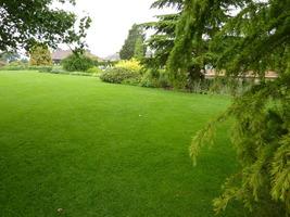 Ogromny trawnik w angielskim ogrodzie  nienagannie pielęgnowany