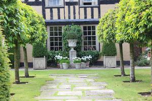 Old Garden - najnowsze nasadzenia. Dwa rzędy ciętych drzew laurowych po obu stronach ścieżki i płyty z kamienia York poprzerastane rumianem.