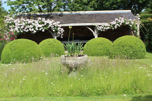 Oaza spokoju - Font Garden