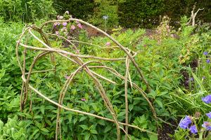 Rośliny wyrosną i malowniczo wplotą się w gałązki