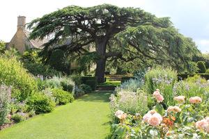 Długie rabaty bylinowe w tonacji różowo-niebiesko-biało-morelowej (Old Garden)