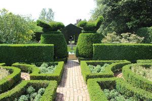 Wejście do Fuchsia Garden zwieńczone topiarami z cisa