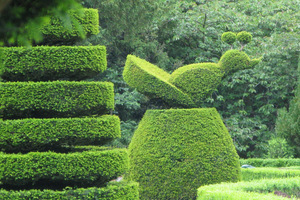 """Sztukę dekoracyjnego cięcia drzew i krzewów - """"ars topiaria"""" opanowano tu do perfekcji"""