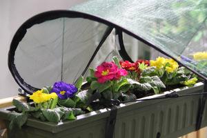 Osłonka i cieniówka dla roślin sezonowych