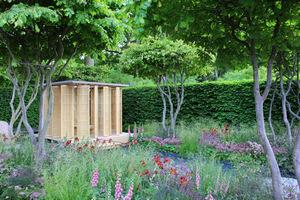 Ogród chroniony żywopłotem będzie miał stabilny mikroklimat i doskonałą ochronę przed mroźnymi wiatrami