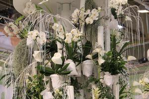 Dekoracja na ślub