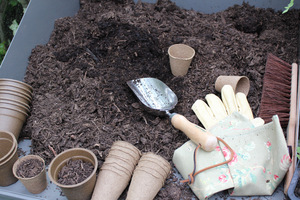 Czas na przesadzanie roślin domowych