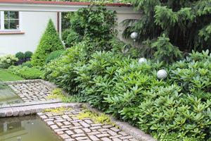 Lustra używane są w ogrodach od dawna. Zapewniają iluzję dodatkowej przestrzeni.