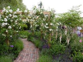 Różana pergola w ogrodzie romantycznym