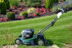 Koszenie trawnika bez użycia kosza znacznie przyspiesza pracę, ale zwiększa możliwość powstawania filcu