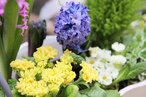 Wesołe kolory wiosny w skrzyneczkach