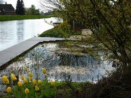 Ogród z zapożyczonym krajobrazem