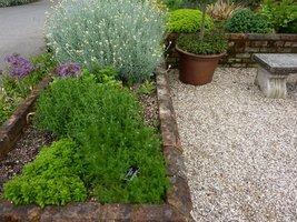 Herbarium w ogrodzie