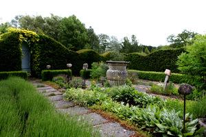 Ogród ziołowy otoczony żywopłotami (Tilford Cottage Garden)