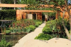 Homebase Teenage Cancer Trust Garden, projekt Joe Swift - Gold Medal