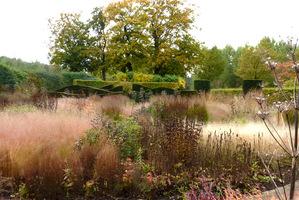 Zjawiskowe kępy w ogrodzie Pieta Oudolfa
