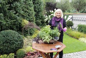 Mały ogródek z ziołami możemy zrobić w najprostszy i najtańszy sposób wyszukując używaną skrzynkę