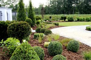 Ogród na podwyższonej rabacie