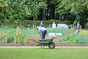 Użyźniając ogród jesienią, efekty odczujemy wiosną