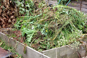 Odpady organiczne z ogrodu służą tworzeniu kompostu