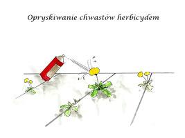 Opryskiwanie chwastów herbicydem