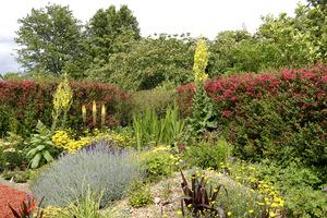 Ładny ogród wymaga naszej uwagi i pielęgnacji