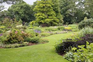 Przycinanie brzegów trawnika raz w miesiącu to jeden na najłatwiejszych sposobów sprawienia, że ogród jest naprawdę zadbany