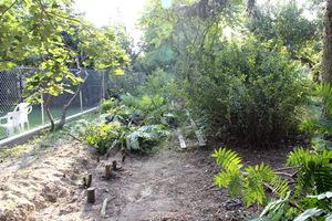 Bardzo ważne jest pozbycie się korzeni chwastów wieloletnich, karp drzew i starych roślin