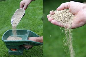 Siew nasion możemy wykonać przy pomocy własnych rąk, siewnika ręcznego lub na kółkach