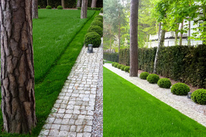 Zabiegi te mają za zadanie spowodować rozkrzewianie się trawy. Po kilku miesiącach będzie ładna i gęsta