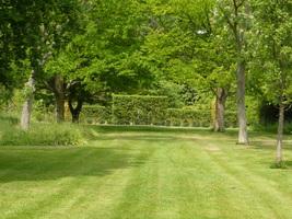 Trawnik latem wymaga wielu zabiegów pielęgnacyjnych