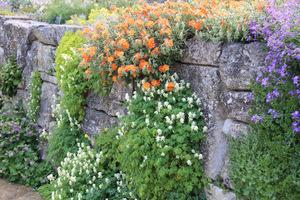 Murki oporowe** w ogrodzie są istotnym elementem architektury krajobrazu