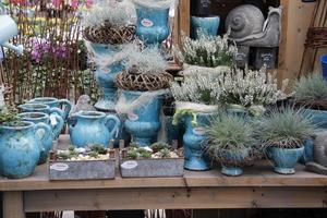 """Jeśli chodzi o pojemniki, szczególnie upodobałam sobie doniczki ceramiczne, w kolorze """"brudnych"""" niebieskości"""