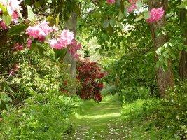 Spacerując trawiastymi ścieżkami odkrywamy coraz piękniejsze widoki