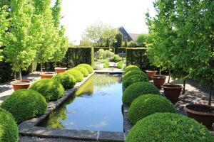 Rill Garden