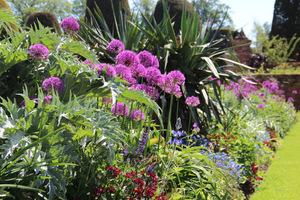 Carolean Garden, niesamowite rabaty