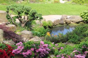 Widok z góry na Rock Garden