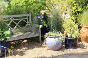 Modelowy ogród z niebieskimi dodatkami