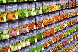 Oferta warzyw, warto je posiać