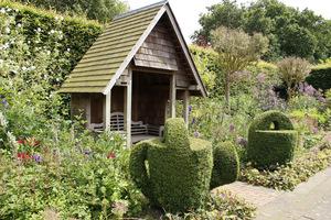 Topiary z bukszpanu