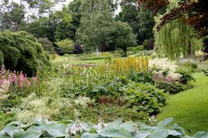 Ogród inspiruje i zachwyca na każdym kroku