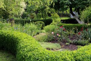 Najbardziej urokliwy zakątek ogrodu