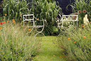 Kącik wypoczynkowy wśród szumiących traw