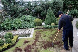 Rozprowadzanie ziemi po zniszczonym zimą trawniku