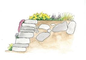 Planując ogród skalny bierzemy pod uwagę jego wielkość. Powinna być ona proporcjonalna do wielkości całego ogrodu