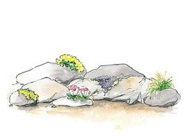 Większość roślin do ogrodu skalnego potrzebuje słonecznego stanowiska dlatego budujemy go na południowym stoku