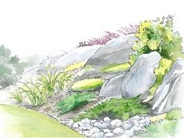 Ogród skalny na skarpie wygląda bardzo naturalnie