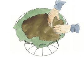 Nasypujemy kompostu 8 cm poniżej górnej obręczy, delikatnie go uklepując