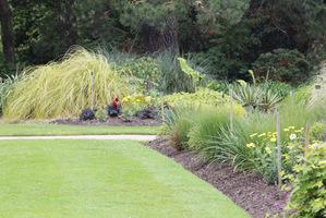 Oszczędzamy także wodę do podlewania, bo ochroniona grubą warstwą ściółki tak nie paruje i rośliny mogą do woli korzystać