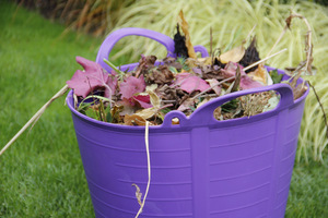 Czyścimy rabaty z uschniętych liści